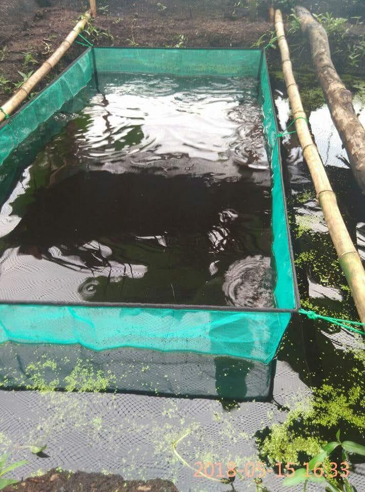 Distributor Jaring Ikan Terlengkap Dan Harga Terjangkau